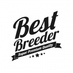 logo Best Breeder